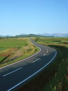 ビジネス成功への道